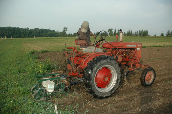 caitlin-on-tractor