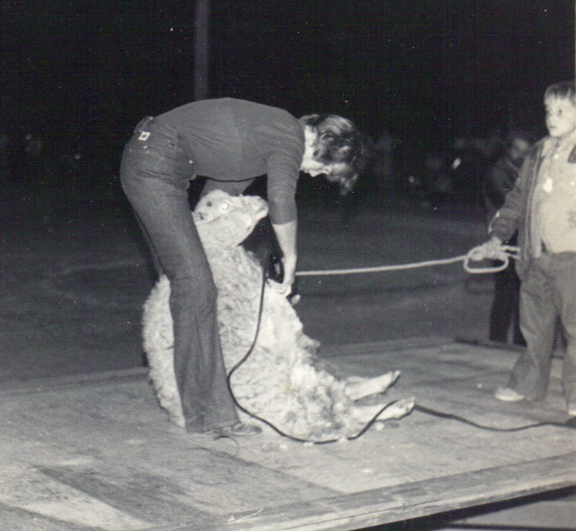 Jean Kuehn at a sheep-shearing demonstration.